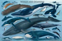 Whales & Dolphins - Scratch and Dent Dolphins Children's Puzzles