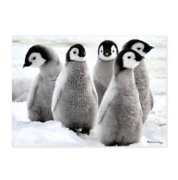 Penguin Party Baby Animals Children's Puzzles