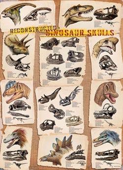 Reconstructed Dinosaur Skulls Dinosaurs Jigsaw Puzzle