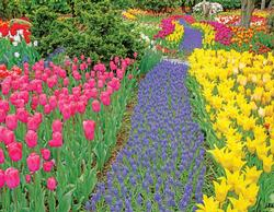Trail of Blooms Garden Jigsaw Puzzle