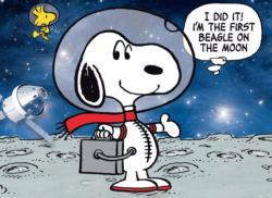 Peanuts Cartoons Jigsaw Puzzle