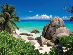 Seychelles Seascape / Coastal Living Large Piece