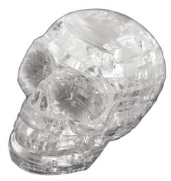 Skull (Clear) Anatomy & Biology Crystal Puzzle