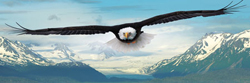 Eagle Birds Panoramic Puzzle