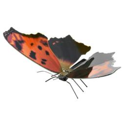 Eastern Comma Butterflies and Insects Metal Puzzles