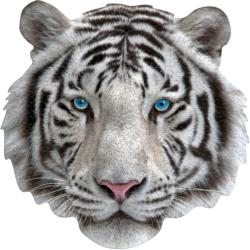 I Am White Tiger Tigers Children's Puzzles