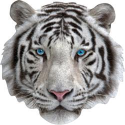 Madd Capp Mini Puzzle - I AM White Tiger Tigers Jigsaw Puzzle