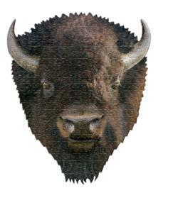 I AM Bison Animals Jigsaw Puzzle