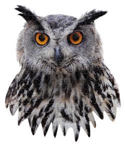 I AM Owl Owl Jigsaw Puzzle