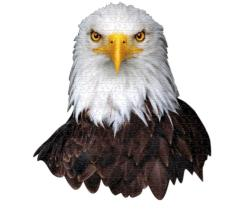 I AM Eagle Eagles Jigsaw Puzzle