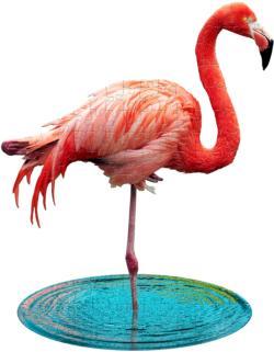 I Am Lil' Flamingo Birds Children's Puzzles