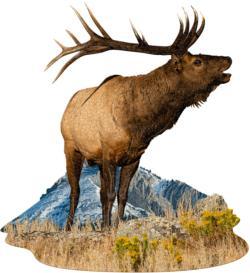 I Am Elk Animals Jigsaw Puzzle