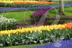 Flower Garden Lakes / Rivers / Streams Wooden Jigsaw Puzzle