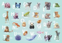 Animal Alphabet Language Arts Children's Puzzles