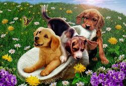 Frolicking Puppies Flowers Children's Puzzles