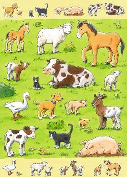 Animals & their Babies Baby Animals Children's Puzzles