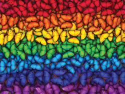 Butterfly Spectrum Pattern / Assortment Jigsaw Puzzle