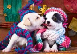 Best Friends (Adorable Animals) Photography Large Piece