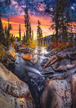 Earthpix - Forest Magic Hour Nature Jigsaw Puzzle
