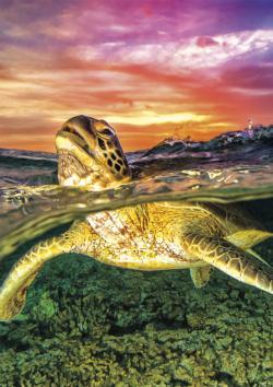 Sea Turtle Under The Sea Jigsaw Puzzle
