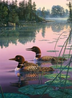 Northern Splendor Lakes / Rivers / Streams Jigsaw Puzzle
