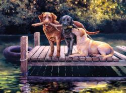 Dog Days Lakes / Rivers / Streams Jigsaw Puzzle