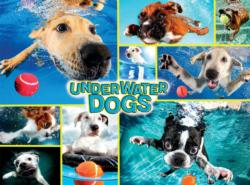 Underwater Dogs Collage Jigsaw Puzzle