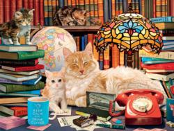 Academic Cats Library / Museum Jigsaw Puzzle