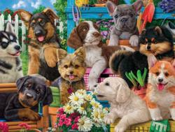 Funny Puppies Dogs Jigsaw Puzzle