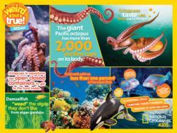 Weird But True Ocean Educational Children's Puzzles