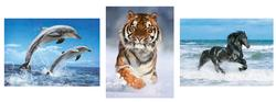 Animals (3 in 1) Tigers Jigsaw Puzzle