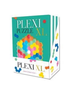 Plexi Puzzle XL Brain Teaser