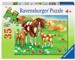 Cute Horses Horses Children's Puzzles