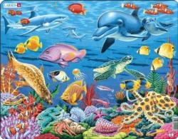 Coral Reef Fish Children's Puzzles