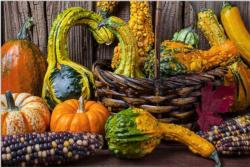Harvest Colors Food and Drink Jigsaw Puzzle