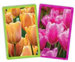 Spring Tulips Jumbo Index Playing Cards Playing Cards