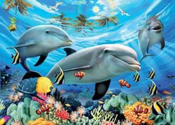 Caribbean Smile Dolphins Kids Puzzle