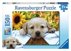 Puppy Picnic Baby Animals Children's Puzzles