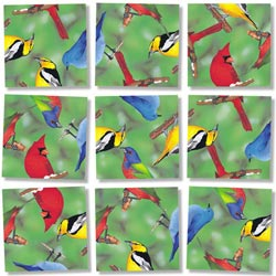 North American Birds Birds Non-Interlocking Puzzle