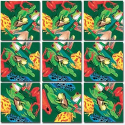 Frogs Reptiles / Amphibians Non-Interlocking Puzzle