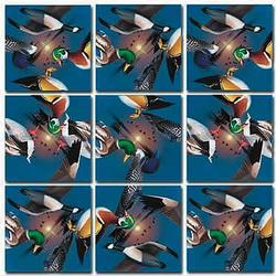 Water Birds Fish Non-Interlocking Puzzle