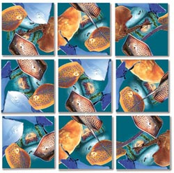 Stingrays Marine Life Children's Puzzles