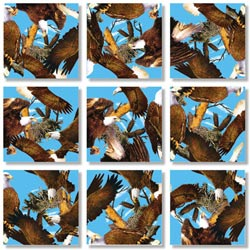 Bald Eagles Eagles Non-Interlocking Puzzle