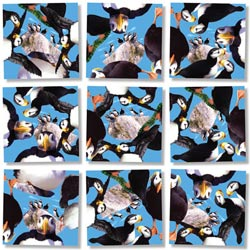 Puffins Birds Non-Interlocking Puzzle