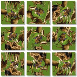Moose! Wildlife Children's Puzzles