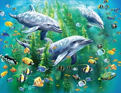 Dolphin Trio Fish Large Piece