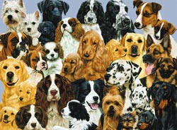 Mother's Pride Dogs Jigsaw Puzzle