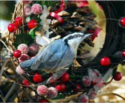 Nuthatch Wreath Birds Wooden Jigsaw Puzzle