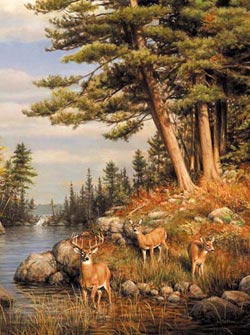 Deer and Pines Lakes / Rivers / Streams Jigsaw Puzzle
