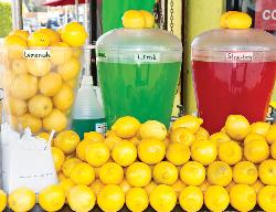 Lemonade (You Smell) Food and Drink Scratch & Sniff